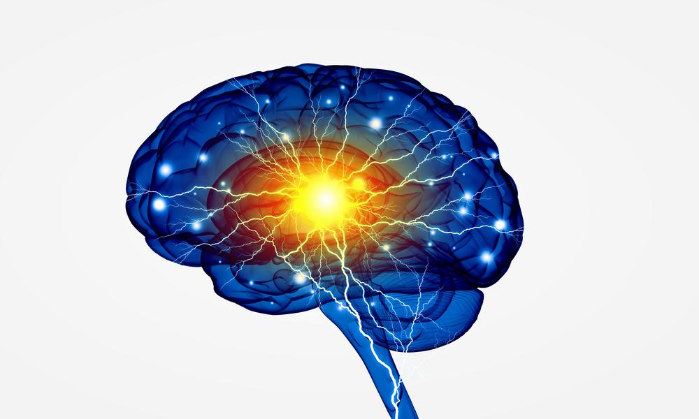 Cerebro Conexoes Mindfulness Servicos Saude Hibridize